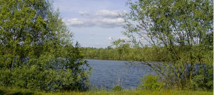 Wasserstände am Habermannsee und Butzer See gestiegen