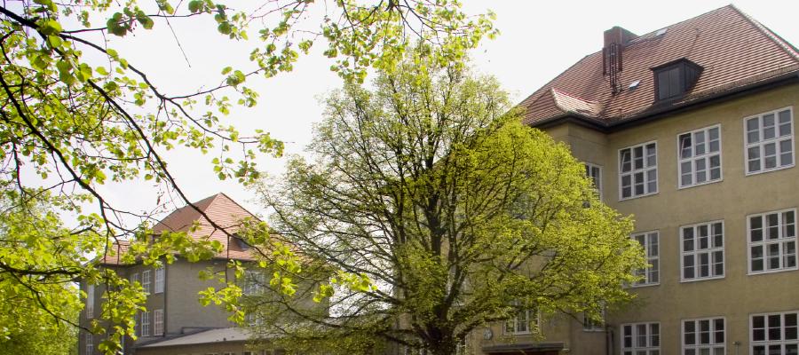 Am 06. Februar habe ich den Bezirksbürgermeister und Schulstadtrat, Stefan Komoß, eingeladen, um den Maßnahmenplan des Bezirksamtes zur Sanierung der derzeit gesperrten Sporthallen in der Ulmen-Grundschule und der Mahlsdorfer Grundschule, der Aula in der Friedrich-Schiller-Schule und der Kita in der Ulmenstraße vorzustellen.