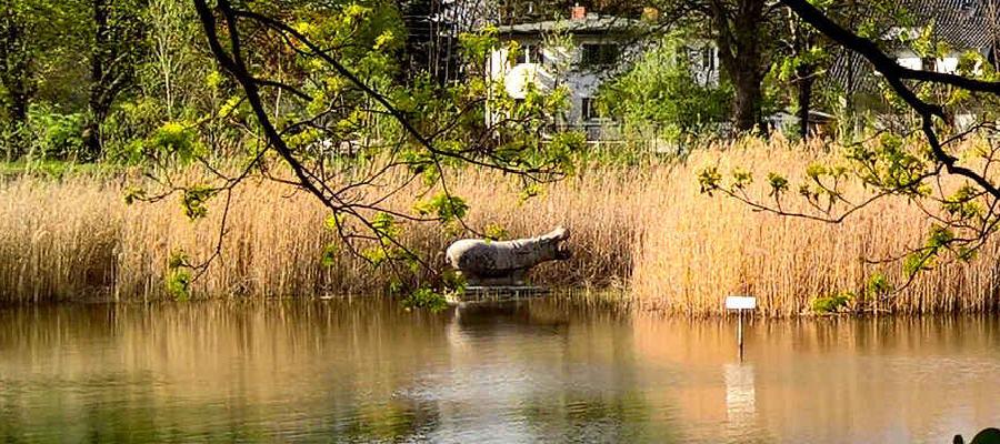 Eine Perspektive für das Wernerbad-Grundstück