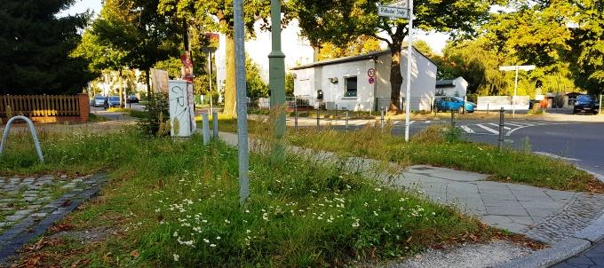 Immer wieder werde ich auf die Verwahrlosung im Bahnhofsumfeld hingewiesen. Und glauben Sie mir, mich ärgert das Umfeld auch fast jeden Tag, wenn ich dort vorbeikomme.  Ich habe daher alle beteiligten Ämter - sei es das Natur- und Grünflächenamt, die Berliner Stadtreinigung oder die Senatsverwaltung - angeschrieben, um eine Besserung der Situation zu erreichen. In vielen Fällen konnten mein Team und ich etwas für Abhilfe sorgen.