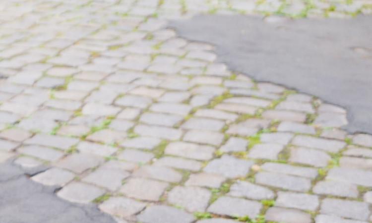 Die Sanierung der Lemkestraße bewegt weiterhin zu Recht viele Anliegerinnen und Anlieger. Mir persönlich ist sehr daran gelegen, dass der Charakter von unserem Kiez auch in Zeiten von Zuzug und Verdichtung erhalten bleibt. Zugleich setze ich mich allerdings auch mit vielen Nachbarn seit Jahren für sichere Gehwege und Straßen ein, die von Jung und Alt genutzt werden können und Lärmimmissionen begrenzen.