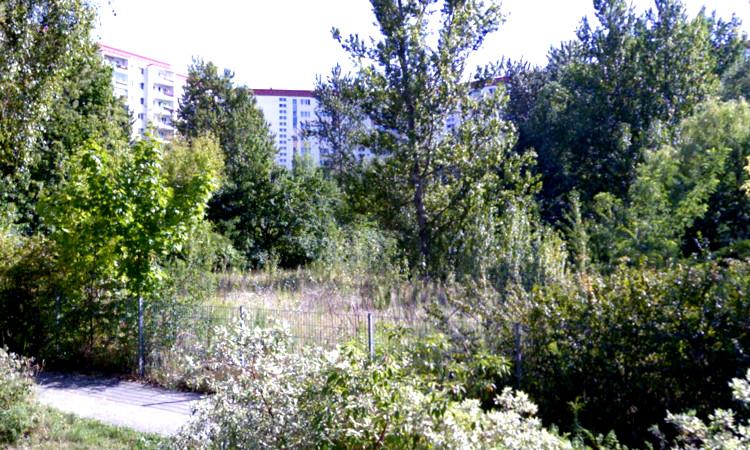 In Marzahn-Hellersdorf entstehen berlinweit überdurchschnittlich viele Wohnungen. Mehrere neue große Wohnbauprojekte befinden sich in Planung oder im Bau. Notwendige Kitas, Schulen, Parkplätze? Fehlanzeige!  Nun sollen auch noch die grünen Innenhöfe bebaut werden.
